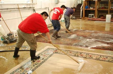 annandale va rug cleaning and rug restoration