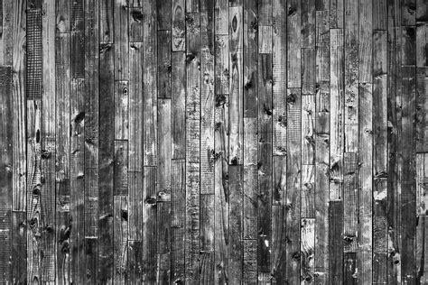 textura interior fotos gratis 225 rbol rama en blanco y negro textura