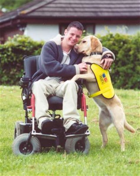 dogs for the disabled help to support dogs 4 the disabled