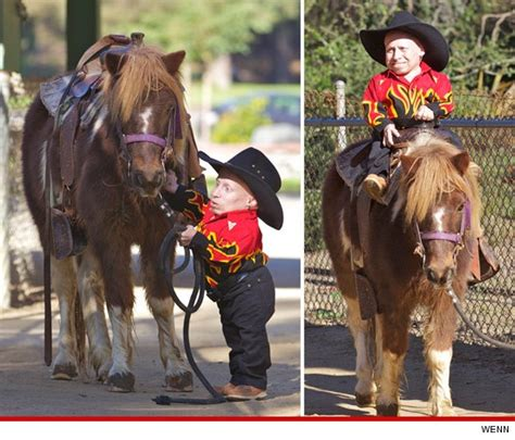 1000 images about horse party on pinterest horse and the pony is only 4 ft tall celebrity news gossip