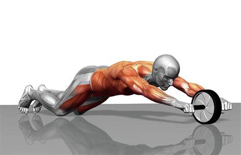 exercise wheel ab wheel exercise by medicalrf