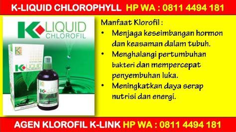 K Liquid Chlorophyll Klorofil Agen Distributor Termurah Grosir promo agen jual klorofil hp wa 0811 4494 181