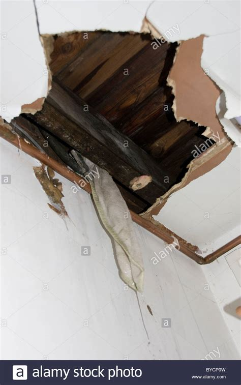 Kitchen Ceiling Leaking by Up Of Big Torn In Kitchen Ceiling And Water