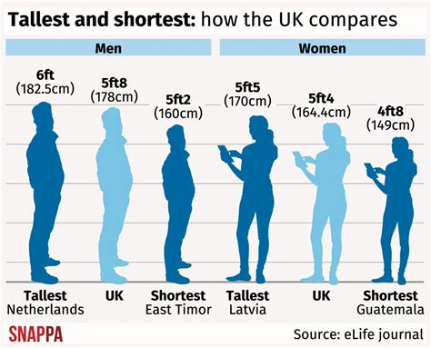 average height dutch men are world s tallest and latvia s women are loftiest study finds aol uk news