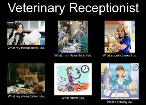 Vet Tech Memes - receptionist how true random pinterest