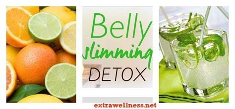 Detox Recipes For Belly by Belly Slimming Detox Recipe Extrawellness 174