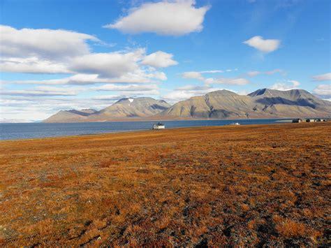 Ur Landscape Definition Tundra Landscape