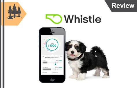 whistle tracker review whistle review america s 1 gps pet tracker with location alerts