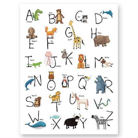 imagenes en ingles que empiecen con n animales por ingl 233 s imagui