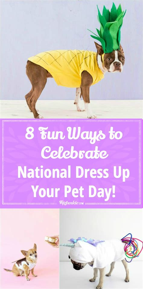 8 Ways To Dress Up Your Or Cat by 8 Ways To Celebrate National Dress Up Your Pet Day