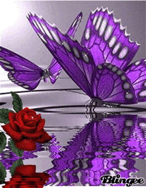 imagenes mariposas con rosas mariposas y rosa fotograf 237 a 90659643 blingee com