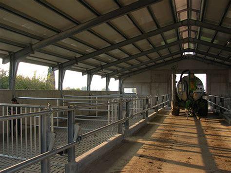 capannoni per allevamento polli agrimetal capannoni in ferro per l allevamento bovino