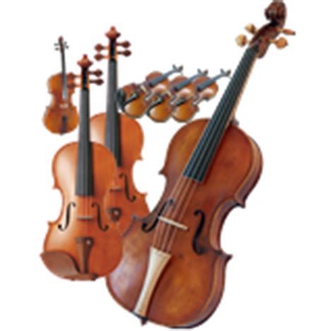 string section instruments roger zare music
