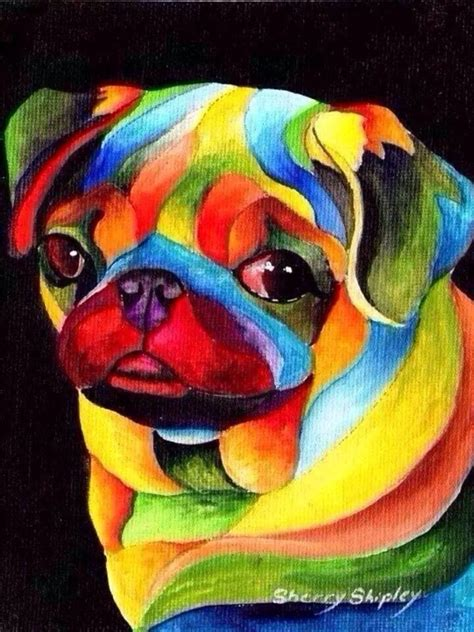 pug breeders in central florida rainbow pug breeds picture
