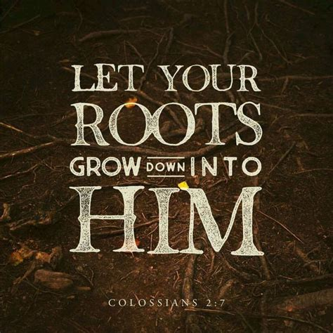Wedding Bible Verses Colossians by Best 25 Colossians 2 Ideas On Roots Faith