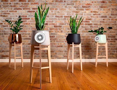 natural plant air purifiers natural air purifier