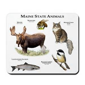 Canadian Home Decor Maine State Animals Mousepad By Admin Cp6091949