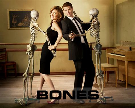 pictures of bones booth and bones wallpapers temperance brennan wallpaper 29146560 fanpop