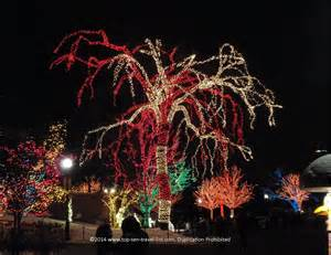 zoo lights in chicago 50 things to do this winter in chicago page 4 of 5