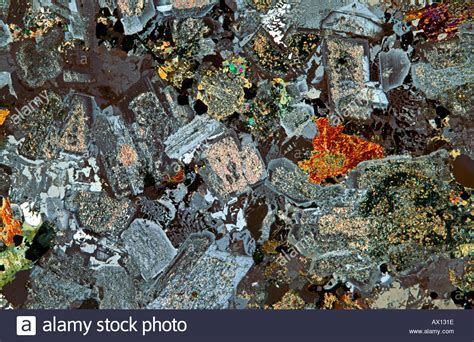 diorite thin section quartz hornblende diorite rock thin section showing
