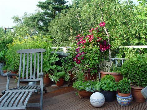 bepflanzung kübel garten balkon idee