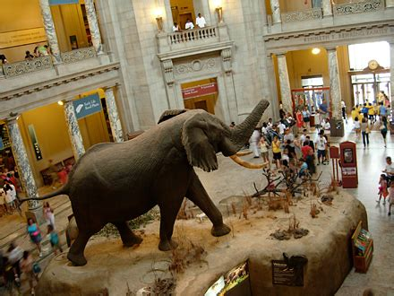 smithsonian national museum of natural history in