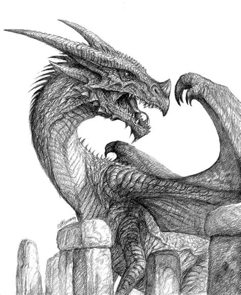 the best drawings of dragons 21 realistic dragon drawings free premium creatives