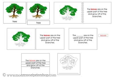 montessori tree printable tree definition set printable montessori nomenclature