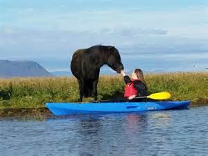 Car Rental Iceland Kayak Kayak Power Challenge Iceland All Seasons