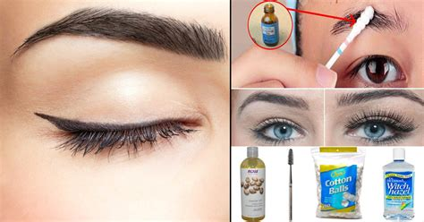 Get Eyebrows by How To Get Fuller Eyebrows With Makeup Mugeek Vidalondon