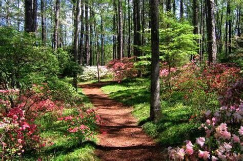 Callaway Gardens Pine Mountain callaway gardens pine mountain ga places i d like to