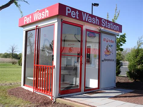 self grooming self serve wash system grooming all paws pet wash