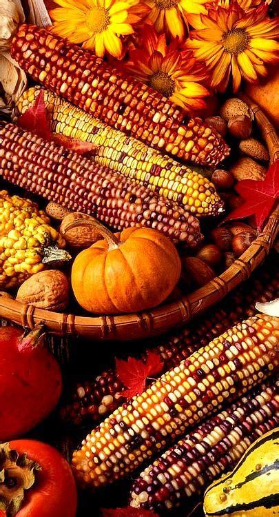 Autumn Bra Cynthia harvest basket autumn delights