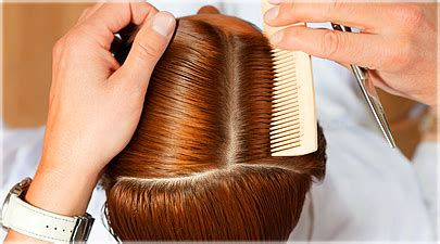 will my hair grow faster if i cut hair care quiz the about your tresses