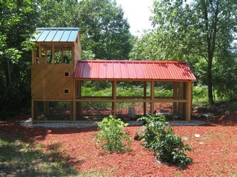 backyard poultry forum modern chicken coop backyard chickens community