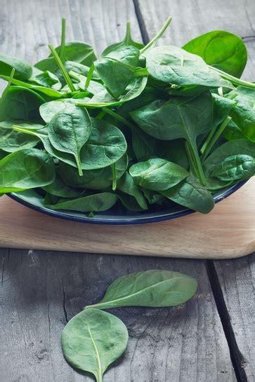 alimenti contengono ossalati gli spinaci e il mito ferro da sfatare l