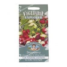 Biji Benih Sayuran Cabe Besar Landung Isi 150 jual benih kailan white 10 gram known you seed