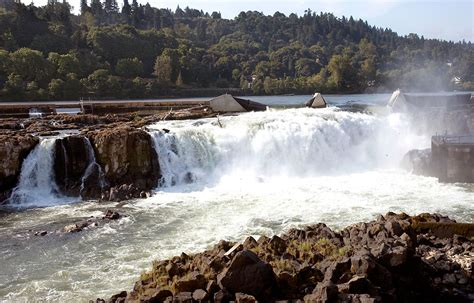 Willamette Search The Gallery For Gt Willamette Falls