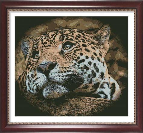 sognare una tigre in casa oltre 25 fantastiche idee su sognare ad occhi aperti su