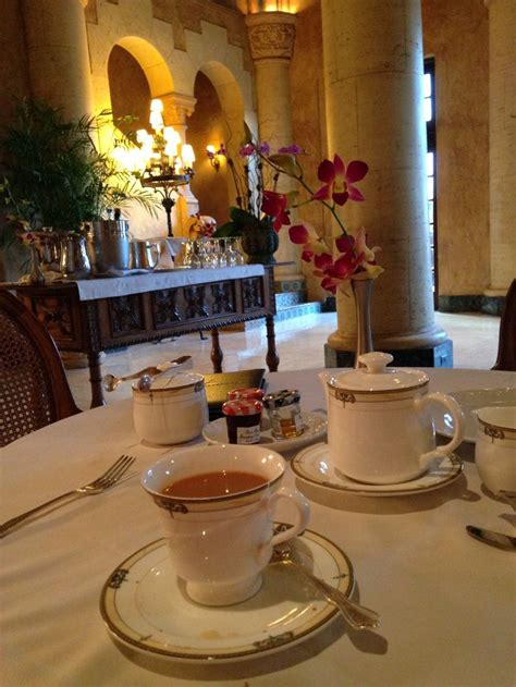 tea rooms in miami 75 best miami images on miami florida city and miami