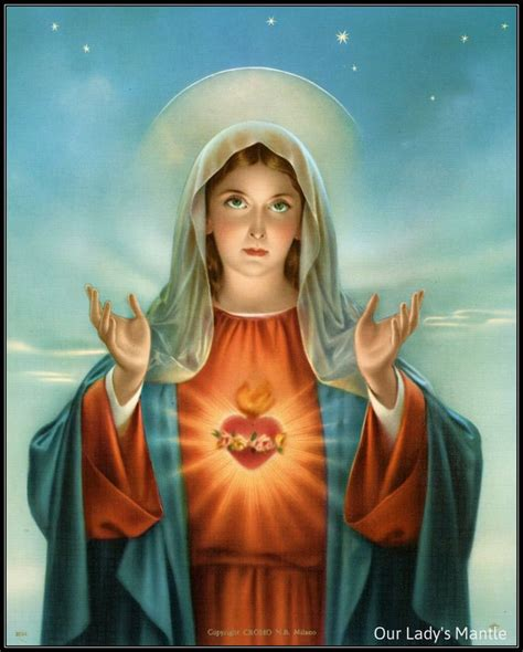 immaculate heart of mary immaculate heart of mary mother mary art pinterest