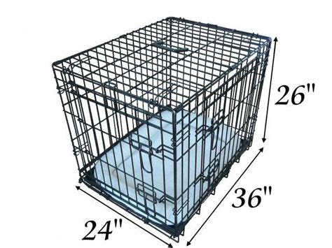 what size crate for golden retriever size of crate for a golden retriever dogs in our photo