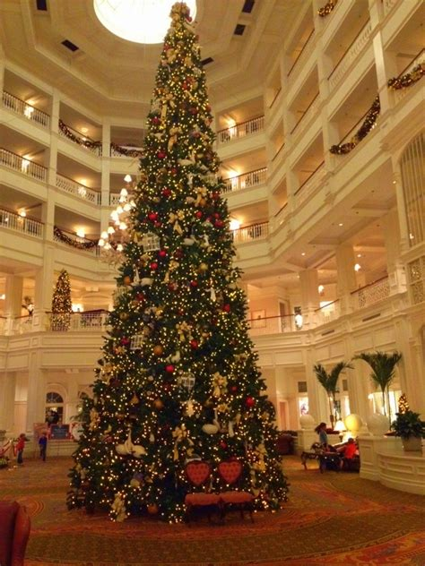 my favorite trees in walt disney world