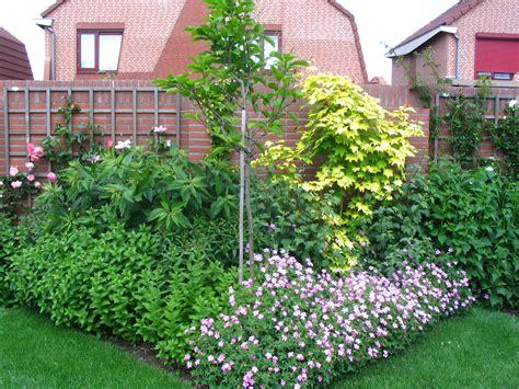intratuin grind planten kiezen voor de tuin tips