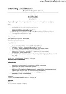 underwriter resume sle leisure assistant resume sales assistant lewesmr
