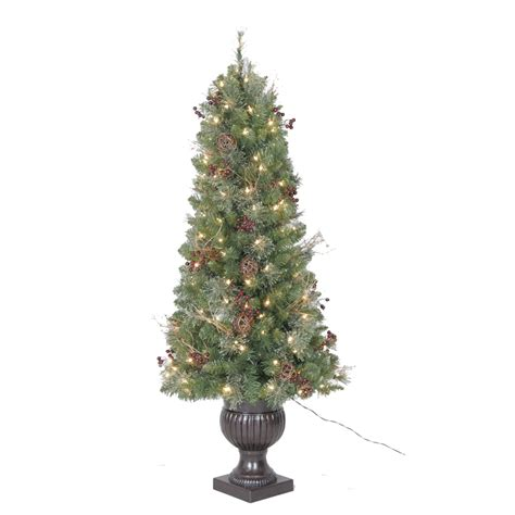 shop holiday living 5 ft indoor outdoor fir pre lit
