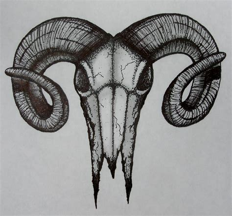 rams skull drawing ram skull drawing by troy cleveland ii