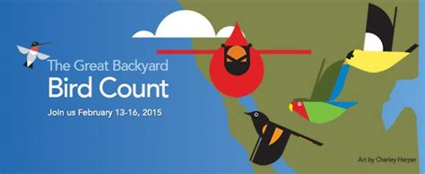 backyard bird count gbbc 2015 preview looking for new birds and new birders all about birds