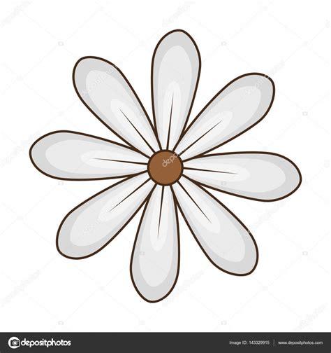 margherita fiore disegno disegno floreale margherita fiore icona vettoriali stock