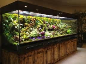 Aquascape Ideas Tropical 1000 Id 233 Es Sur Le Th 232 Me Vivarium Sur Pinterest